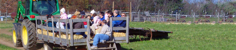 Hayrides Tours Birthday Parties Glastonbury CT